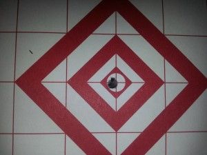 10 rounds at 50 yards American Precision 22LR 40gr TARGET SERIES
